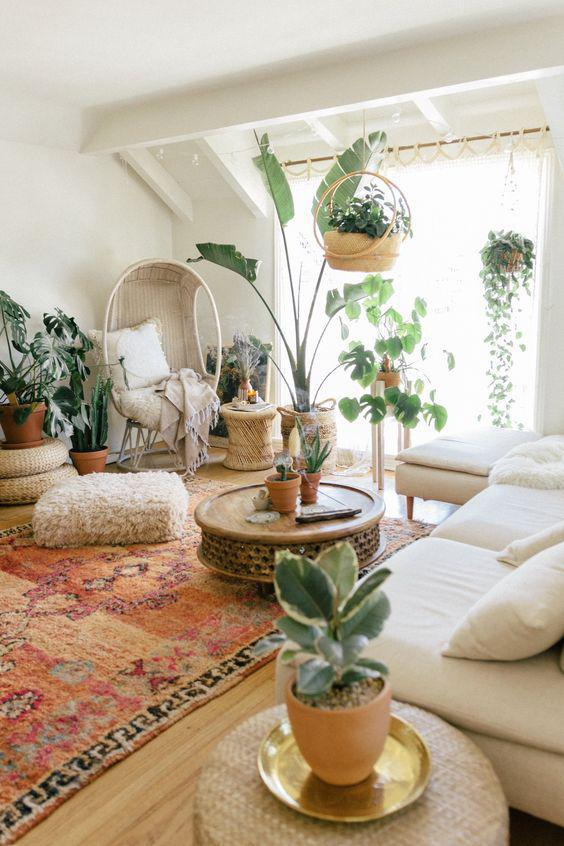31 Pretty Fresh Green Plants to Decor Your Living Room - Page 6 of 7 - Vivelavi Blog
