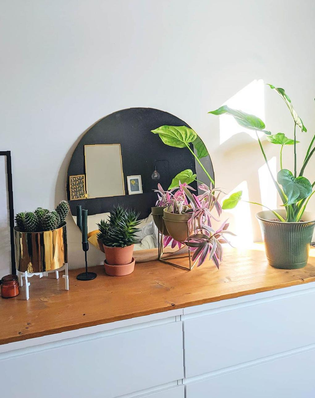 35 Ingenious Ideas To Decorate Your Home With Adding A Greenery - Page 11 of 12 - Guide19 Blog