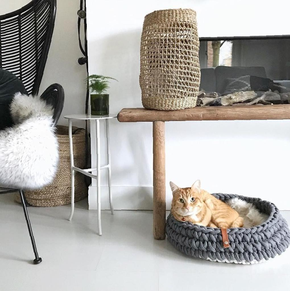 Gorgeous Cat Furnitures Design Idea images - SooAnt