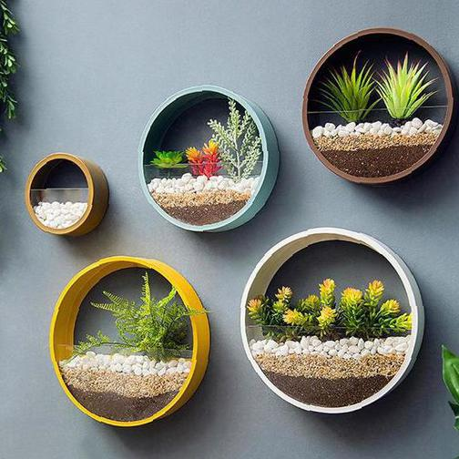 Vibrant plants decorate the home space on the walls - Molitsy Blog