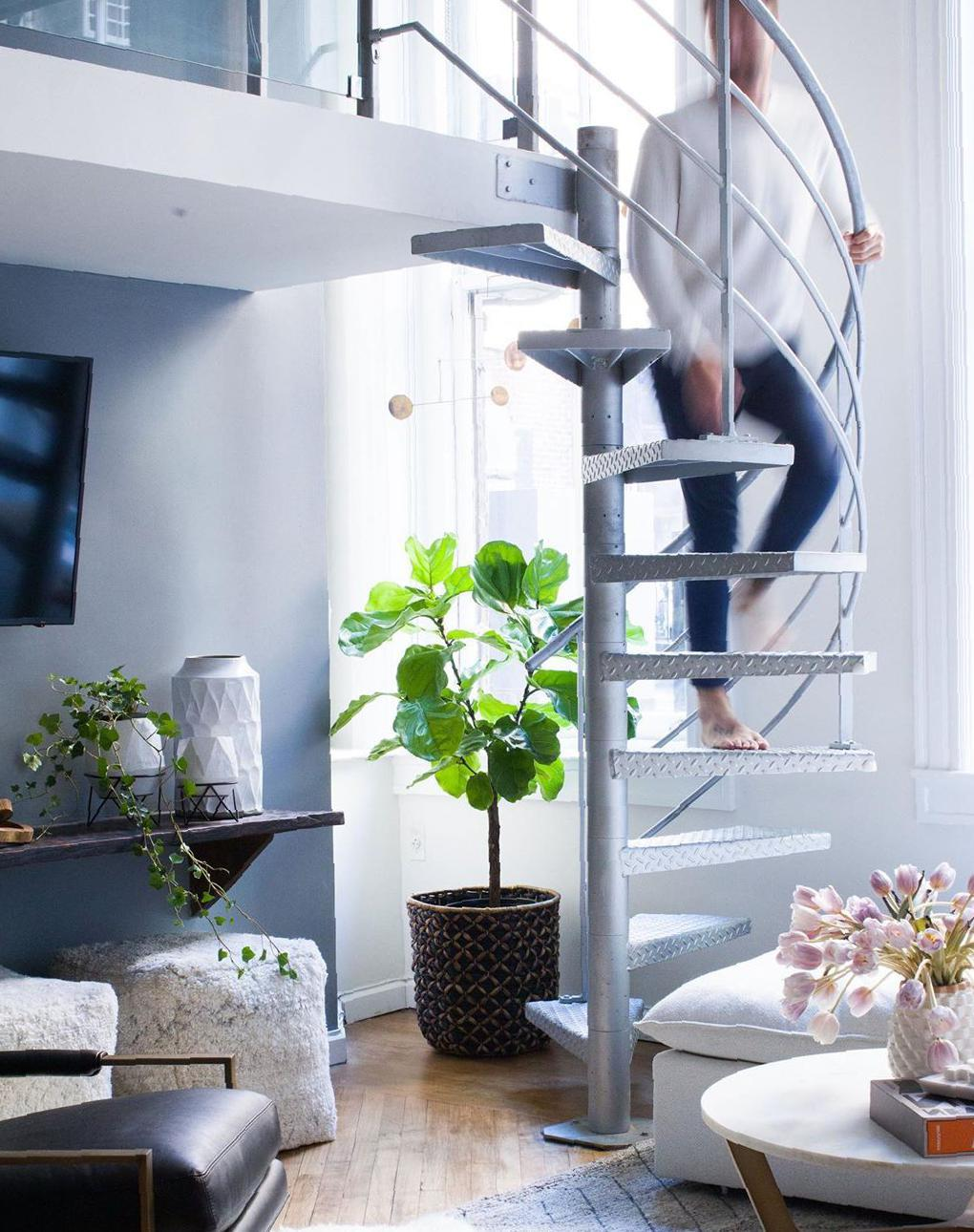 Gorgeous Indoor Plants Idea Images for Decoration - Guide19 Blog